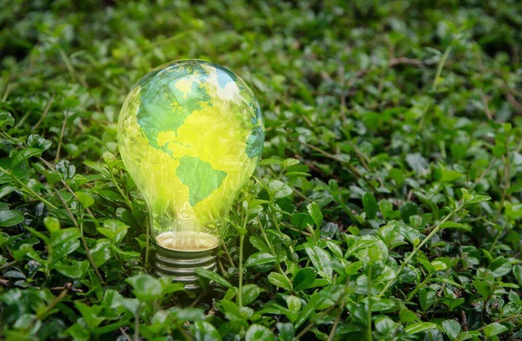 Green LightBulb in Grass